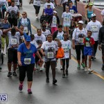 Butterfield & Vallis 5K Run Walk Bermuda, February 7 2016-94
