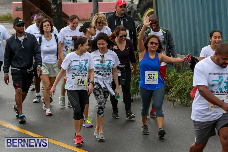 Butterfield-Vallis-5K-Run-Walk-Bermuda-February-7-2016-98