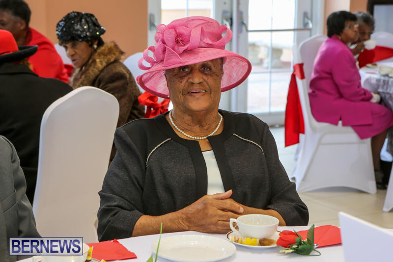 Kings-Queens-Productions-Big-Hats-High-Tea-Social-Bermuda-February-21-2016-14