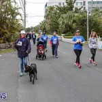 PALS Walk Bermuda, February 21 2016-222