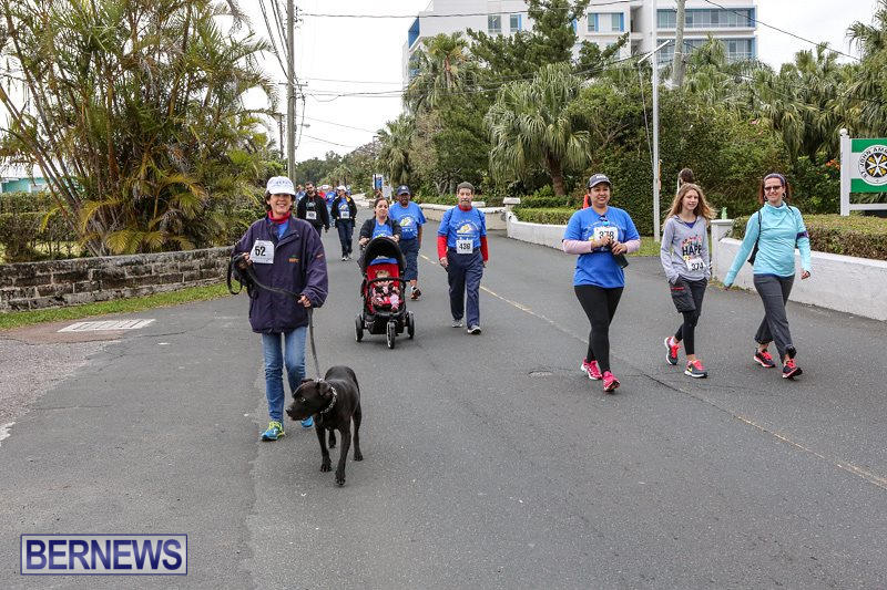 PALS-Walk-Bermuda-February-21-2016-222