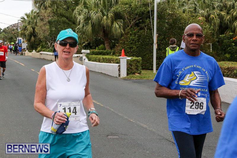 PALS-Walk-Bermuda-February-21-2016-31
