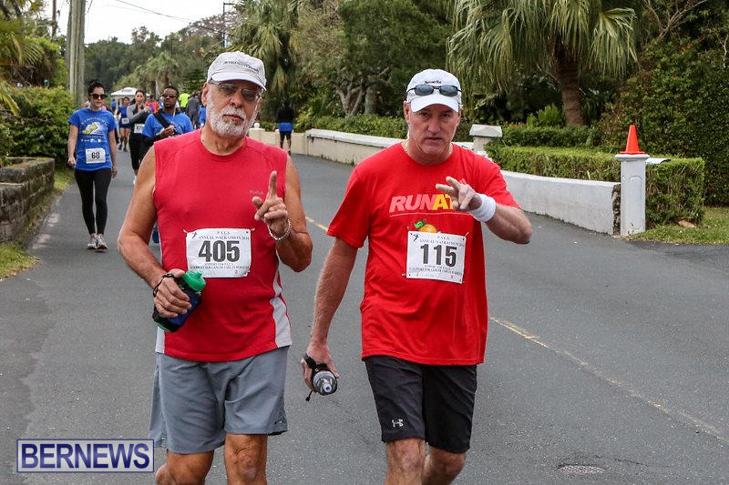 PALS-Walk-Bermuda-February-21-2016-35