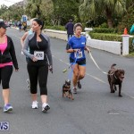 PALS Walk Bermuda, February 21 2016-38