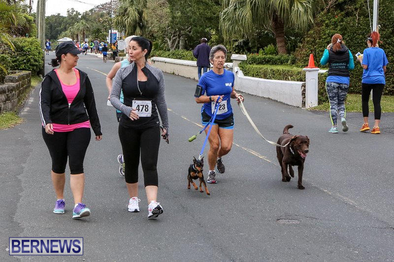 PALS-Walk-Bermuda-February-21-2016-38