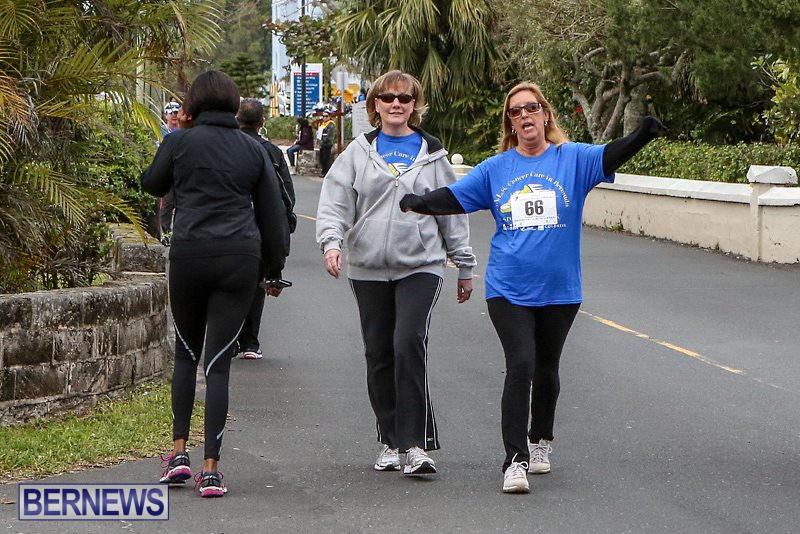 PALS-Walk-Bermuda-February-21-2016-7