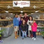 Poultry Show Bermuda, February 20 2016 (85)