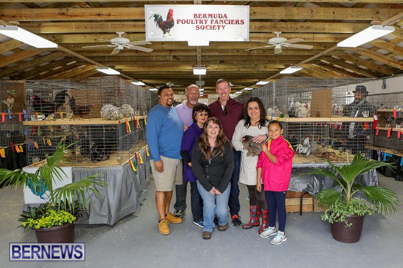 Poultry-Show-Bermuda-February-20-2016-85