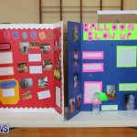Purvis Primary Science Fair Bermuda, February 24 2016-101