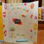 Purvis Primary Science Fair Bermuda, February 24 2016-106