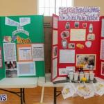 Purvis Primary Science Fair Bermuda, February 24 2016-108