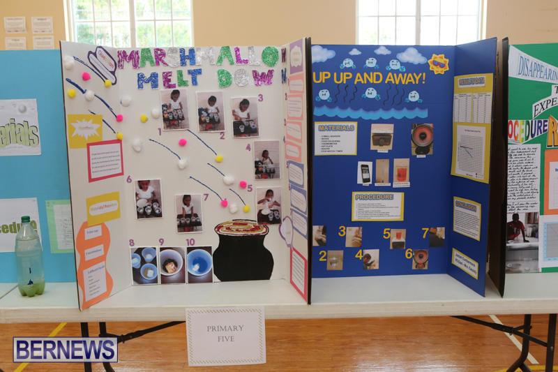 Purvis-Primary-Science-Fair-Bermuda-February-24-2016-109