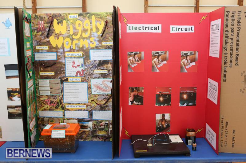 Purvis-Primary-Science-Fair-Bermuda-February-24-2016-112