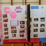 Purvis Primary Science Fair Bermuda, February 24 2016-116