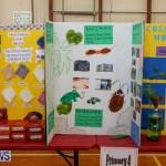 Purvis Primary Science Fair Bermuda, February 24 2016-117