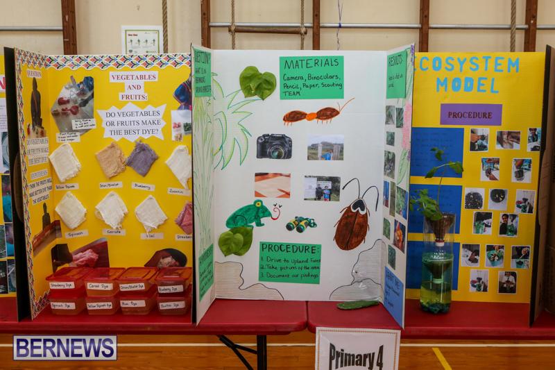 Purvis-Primary-Science-Fair-Bermuda-February-24-2016-117