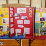 Purvis Primary Science Fair Bermuda, February 24 2016-119