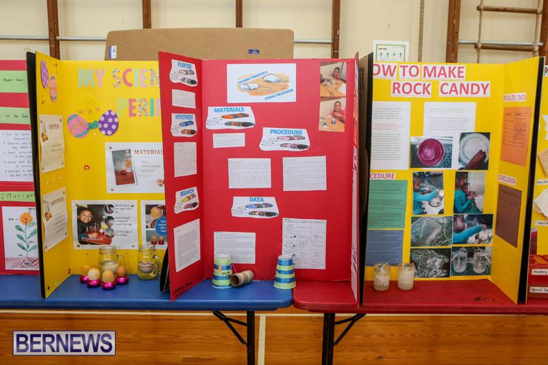 Purvis-Primary-Science-Fair-Bermuda-February-24-2016-119