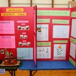 Purvis Primary Science Fair Bermuda, February 24 2016-121