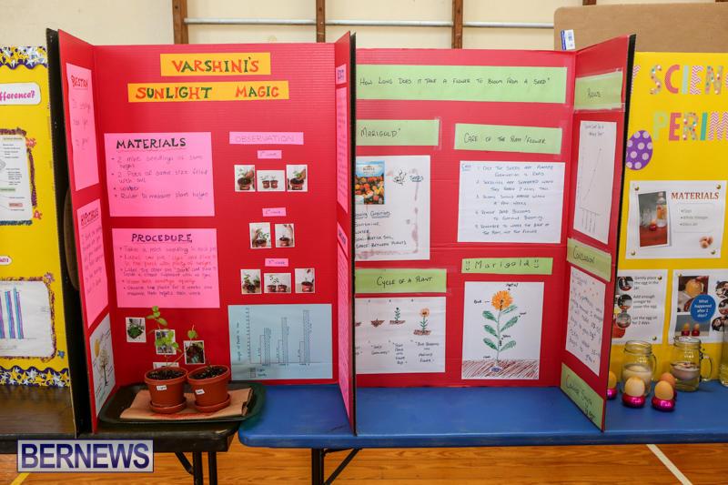 Purvis-Primary-Science-Fair-Bermuda-February-24-2016-121