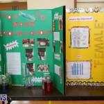 Purvis Primary Science Fair Bermuda, February 24 2016-123