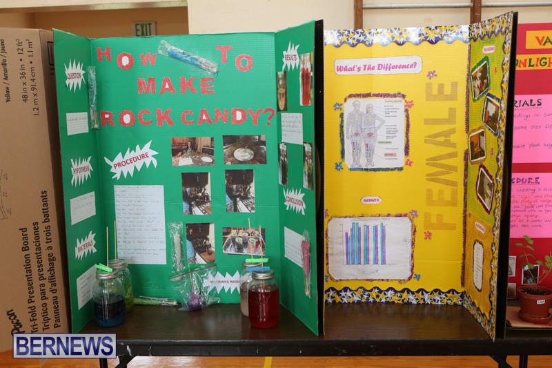 Purvis-Primary-Science-Fair-Bermuda-February-24-2016-123