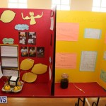 Purvis Primary Science Fair Bermuda, February 24 2016-130