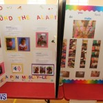 Purvis Primary Science Fair Bermuda, February 24 2016-132