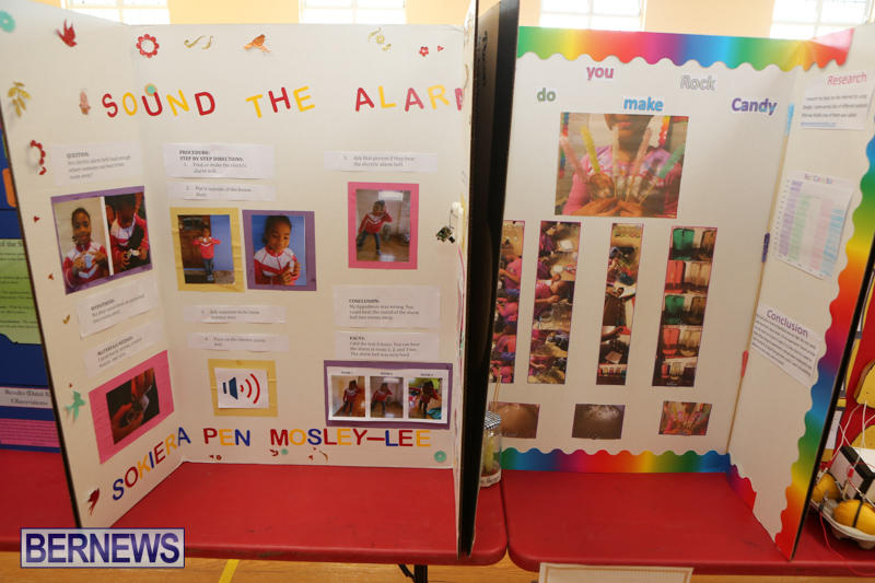 Purvis-Primary-Science-Fair-Bermuda-February-24-2016-132