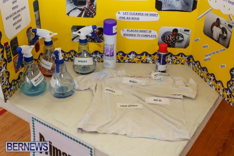 Purvis-Primary-Science-Fair-Bermuda-February-24-2016-137