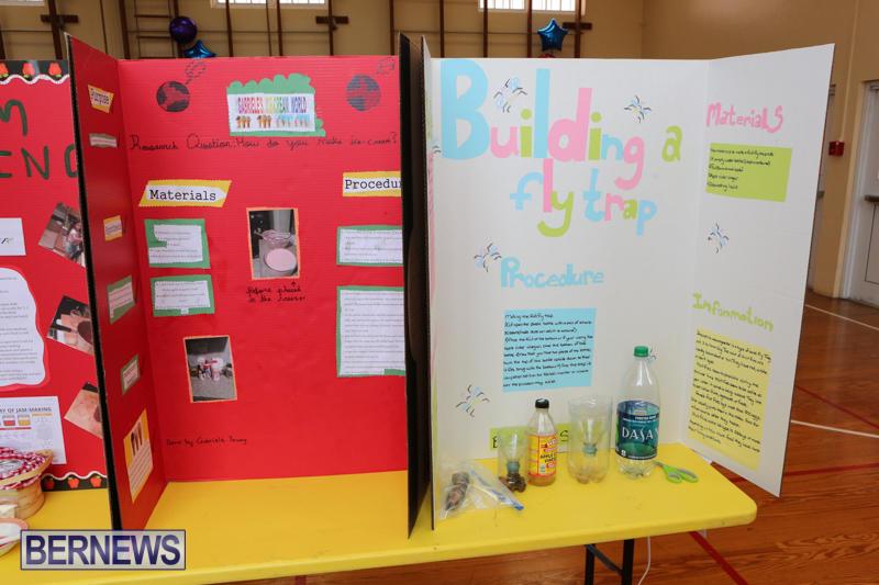 Purvis-Primary-Science-Fair-Bermuda-February-24-2016-139