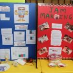 Purvis Primary Science Fair Bermuda, February 24 2016-141