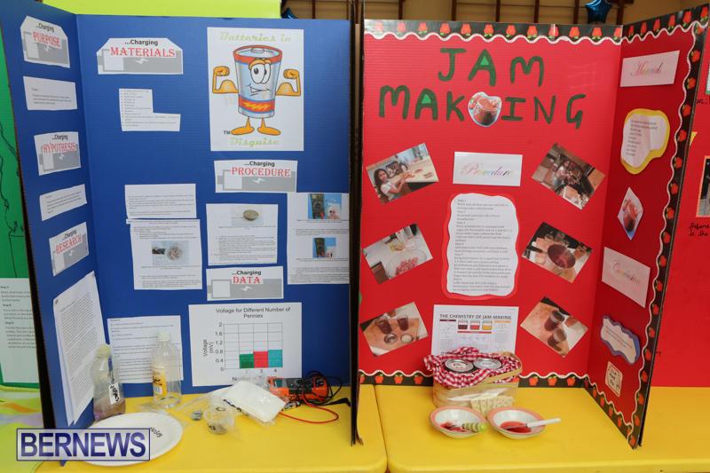 Purvis-Primary-Science-Fair-Bermuda-February-24-2016-141