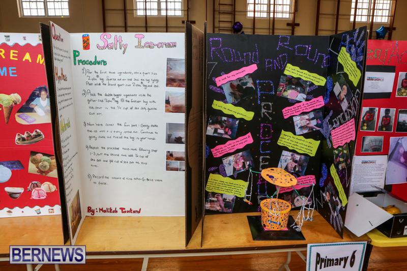Purvis-Primary-Science-Fair-Bermuda-February-24-2016-145