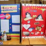 Purvis Primary Science Fair Bermuda, February 24 2016-146