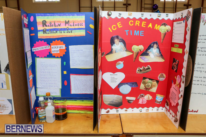 Purvis-Primary-Science-Fair-Bermuda-February-24-2016-146