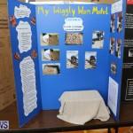Purvis Primary Science Fair Bermuda, February 24 2016-148