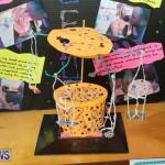 Purvis Primary Science Fair Bermuda, February 24 2016-151
