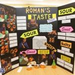 Purvis Primary Science Fair Bermuda, February 24 2016-16