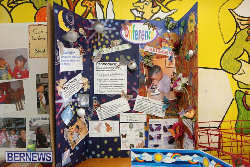 Purvis-Primary-Science-Fair-Bermuda-February-24-2016-18