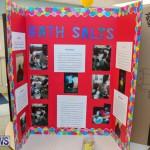 Purvis Primary Science Fair Bermuda, February 24 2016-2
