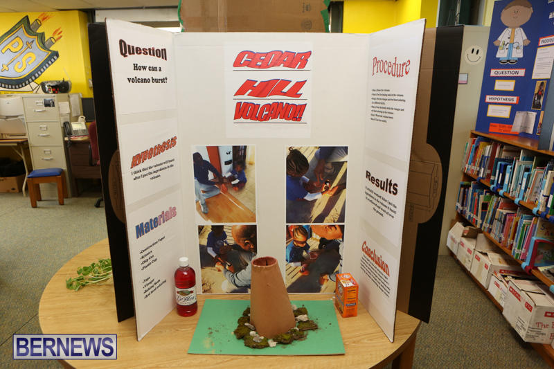 Purvis-Primary-Science-Fair-Bermuda-February-24-2016-20