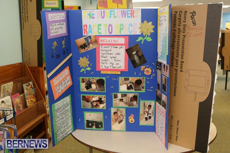 Purvis-Primary-Science-Fair-Bermuda-February-24-2016-24