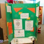 Purvis Primary Science Fair Bermuda, February 24 2016-3