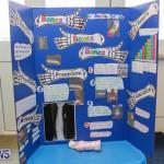 Purvis Primary Science Fair Bermuda, February 24 2016-33