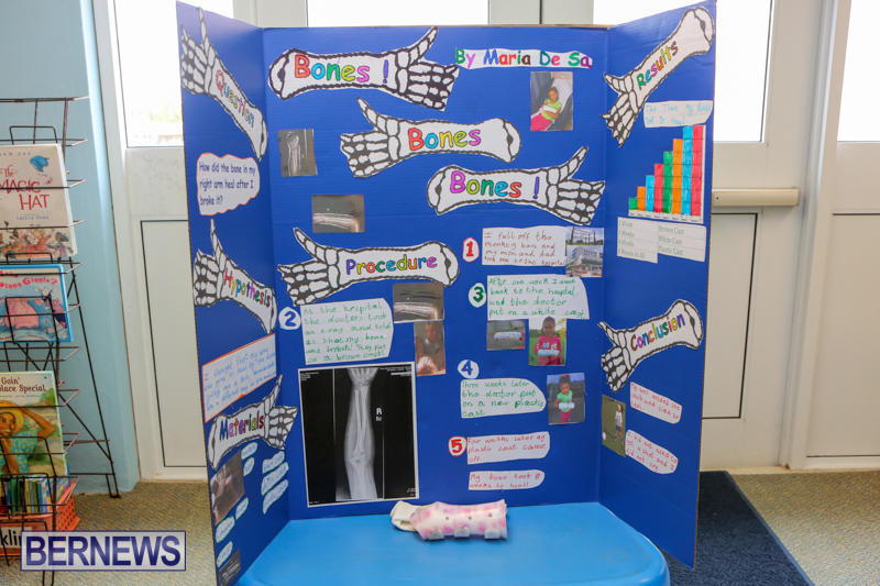 Purvis-Primary-Science-Fair-Bermuda-February-24-2016-33