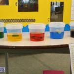 Purvis Primary Science Fair Bermuda, February 24 2016-43