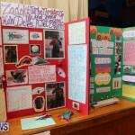 Purvis Primary Science Fair Bermuda, February 24 2016-52