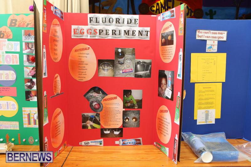 Purvis-Primary-Science-Fair-Bermuda-February-24-2016-56