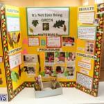Purvis Primary Science Fair Bermuda, February 24 2016-57